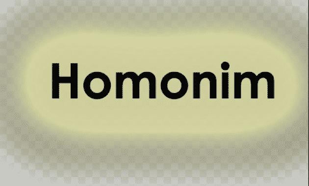 Kalimat Homonim